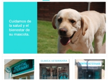 grup veterinar web